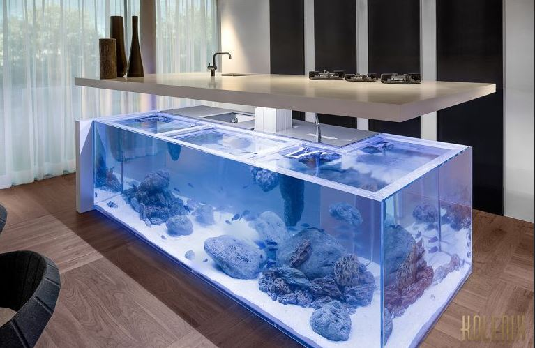 Cuisine design aquarium for Plan travail ilot central