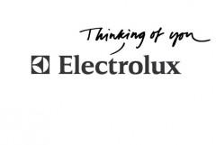 Logo electromenager electrolux